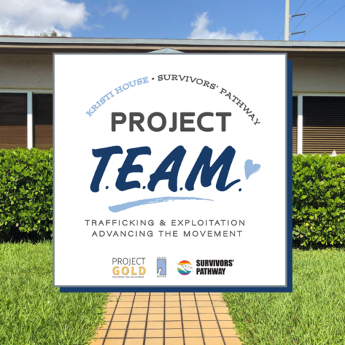 Project TEAM Twitter