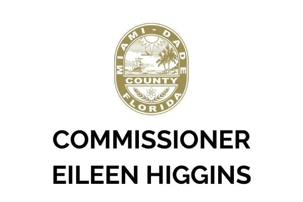 Commissioner Eileen Higgins_